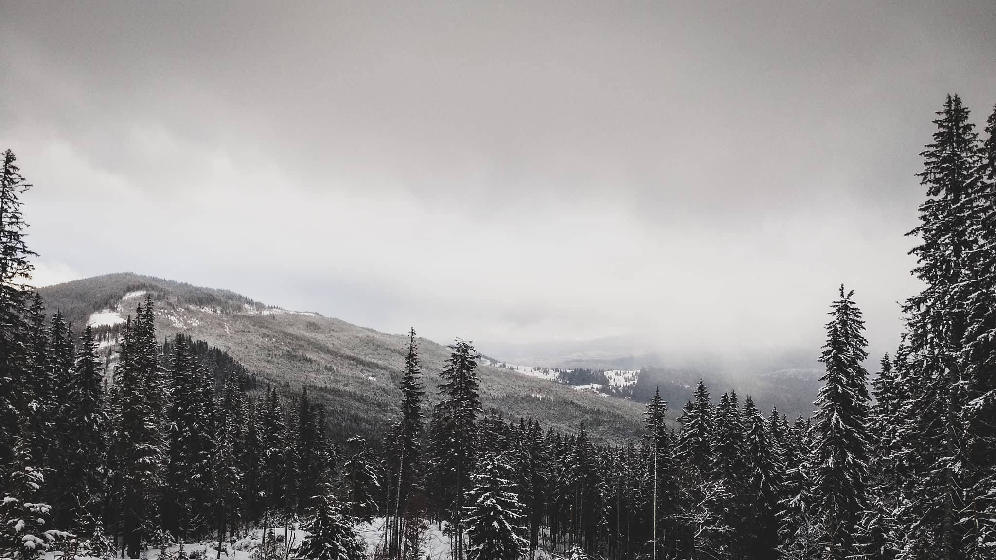 Endless Snowboard Camp (1)